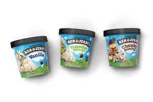 Ben & Jerry's甜点食品包装设计