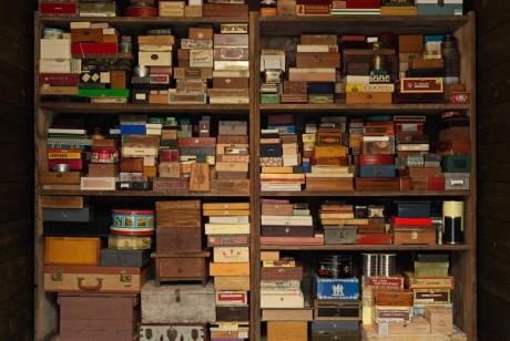 给纽约鸟儿的图书馆