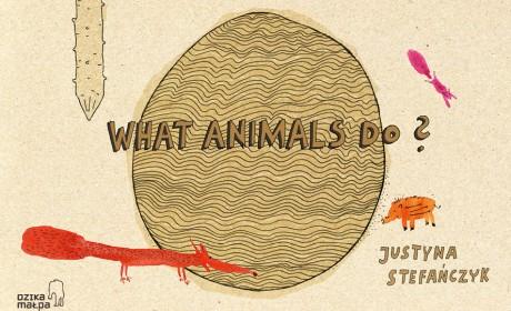 """What animals do?""平面设计作品"