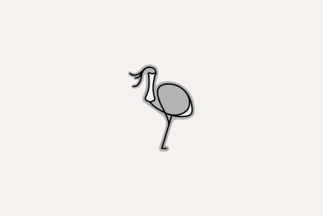 野鹭子 / YELUZI|三一创意实验室出品