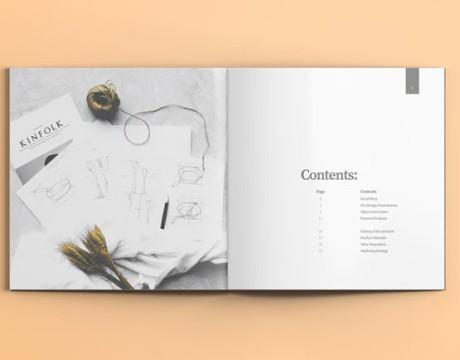 简洁大方的IUIGA画册设计欣赏