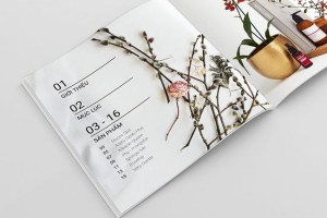 越南LA BORE化妆品目录画册设计