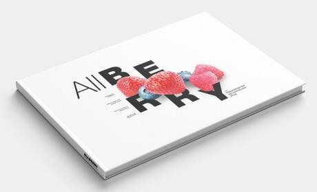 宣传画册设计的版面设计