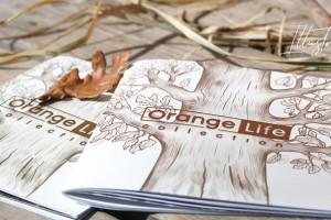 公司宣传画册设计的要点是什么