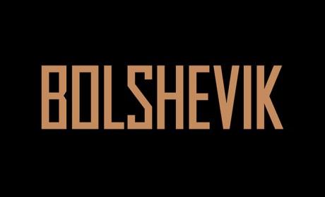 BOLSHEVIK地产项目画册设计欣赏