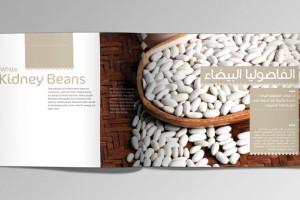 深圳画册设计——体现设计的天然与简练