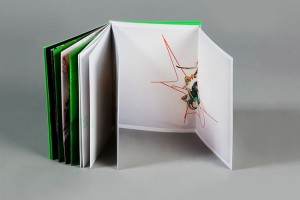 企业宣传画册设计的两大要点