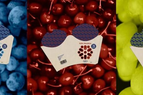 创意水果包装设计sanlucar水果品牌
