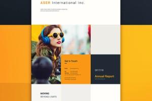 国外优秀企业年报画册设计欣赏
