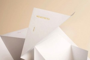 大健康美容品牌形象VI设计手册需要多少钱