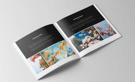深圳画册设计的二大元素