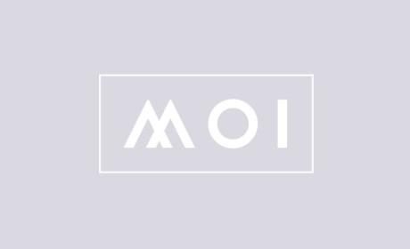 北欧MOI家具品牌VI形象设计