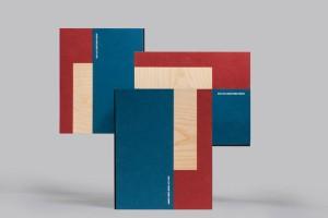 高级画册设计公司怎样表现设计内容