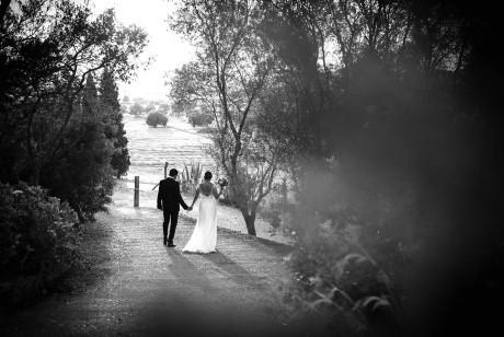 婚庆活动公司Amida品牌视觉和网站设计