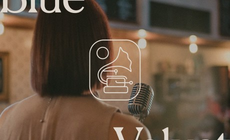 Blue Velvet一枚留声机造型的logo设计