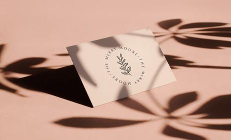 The Merry Moore 风流摩尔女性博客和精品店品牌识别设计