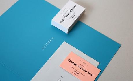中小企业创业公司从什么角度了解企业VI设计?来看看Futurea品牌VI视觉设计