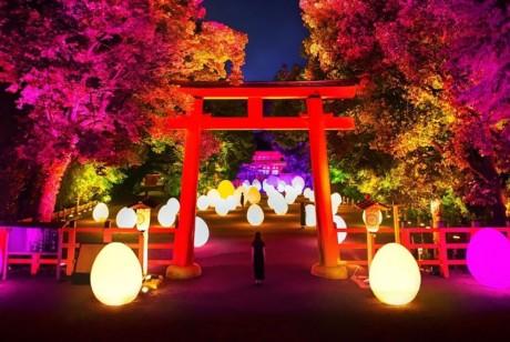 """小伙伴们快看过来,TeamLab又带新作品来世界遗产京都""""下鸭神社""""了"""