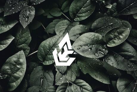深圳资深logo设计公司满足企业设计需求的同时提升品牌格调