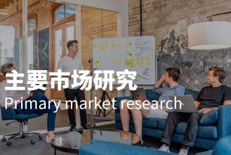 主要市场研究