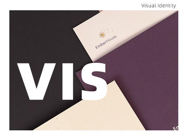 VIS视觉识别系统