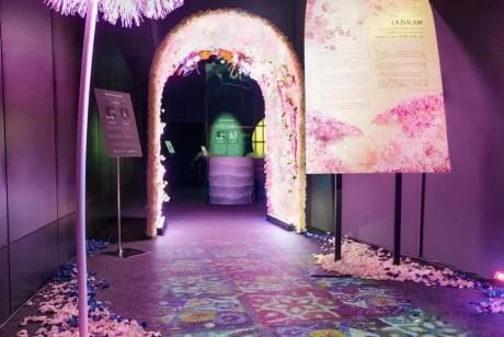 沉浸式的樱花展览策划惊艳了广大游客的目光,光影互动太厉害了!