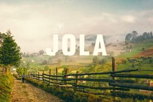 蜂蜜包装年轻化人性化的升级,混合蜂蜜Jola包装识别系统设计