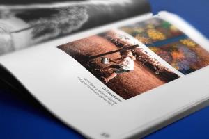 公益活动宣传画册设计,Coconino植树造林活动画册